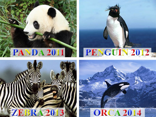 Google Algorithm Updates 2011-2014