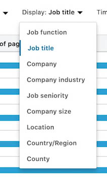 LinkedIn Audience Insight Tag