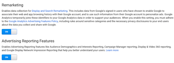 Google Analytics demographics features
